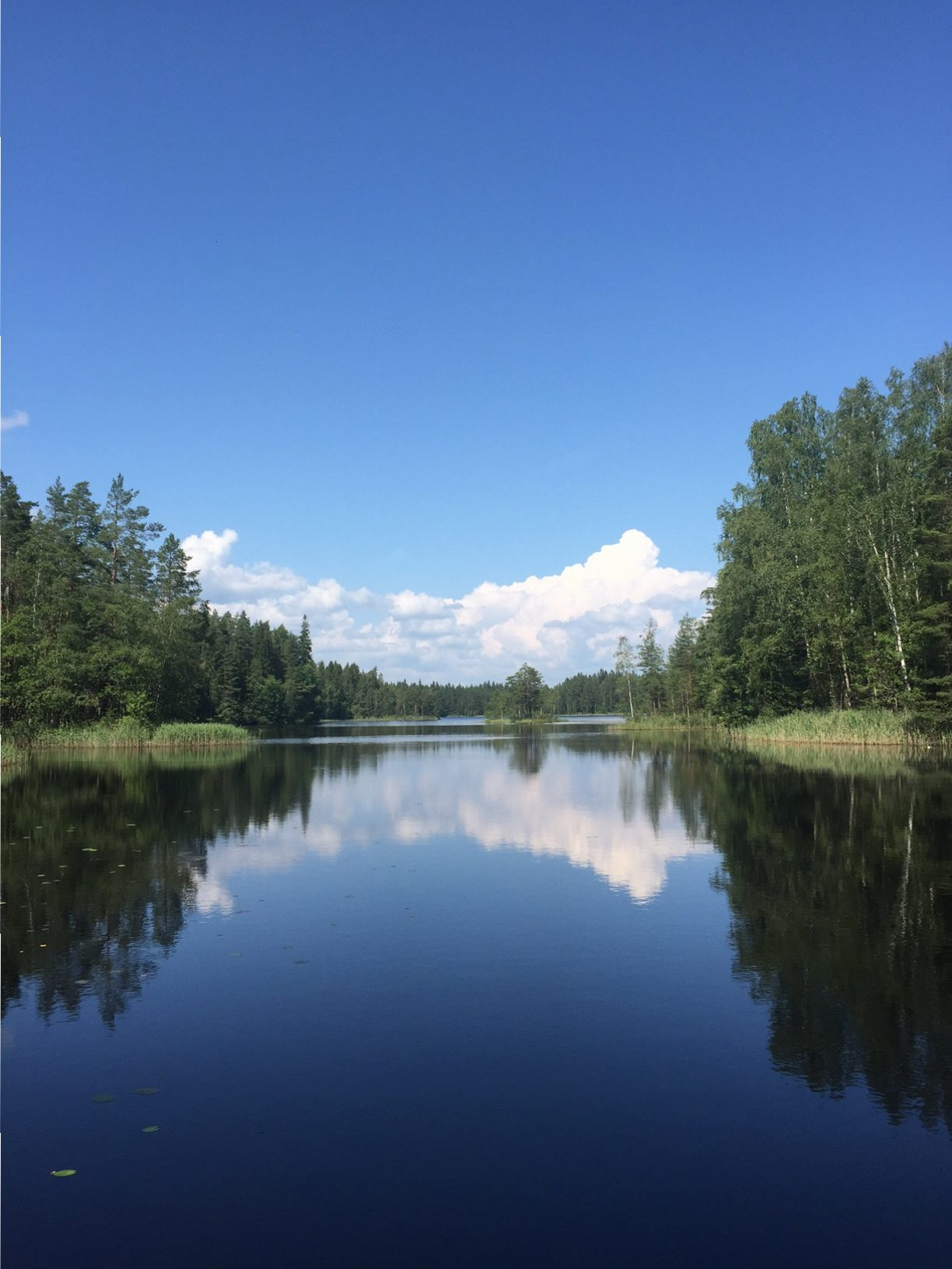 Maanantain positiivinen ajatus 26.9.2016